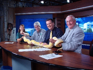 Hope and Dr. Fitzgerald and Hugger the python on the news